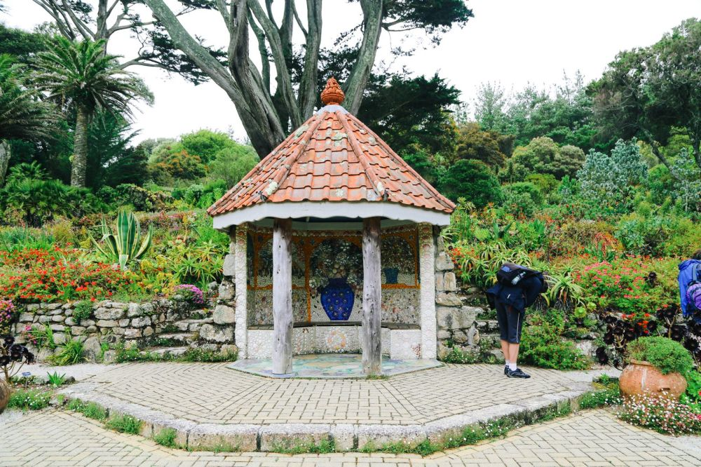 A Day On Tresco Island! Tresco Abbey Gardens (15)