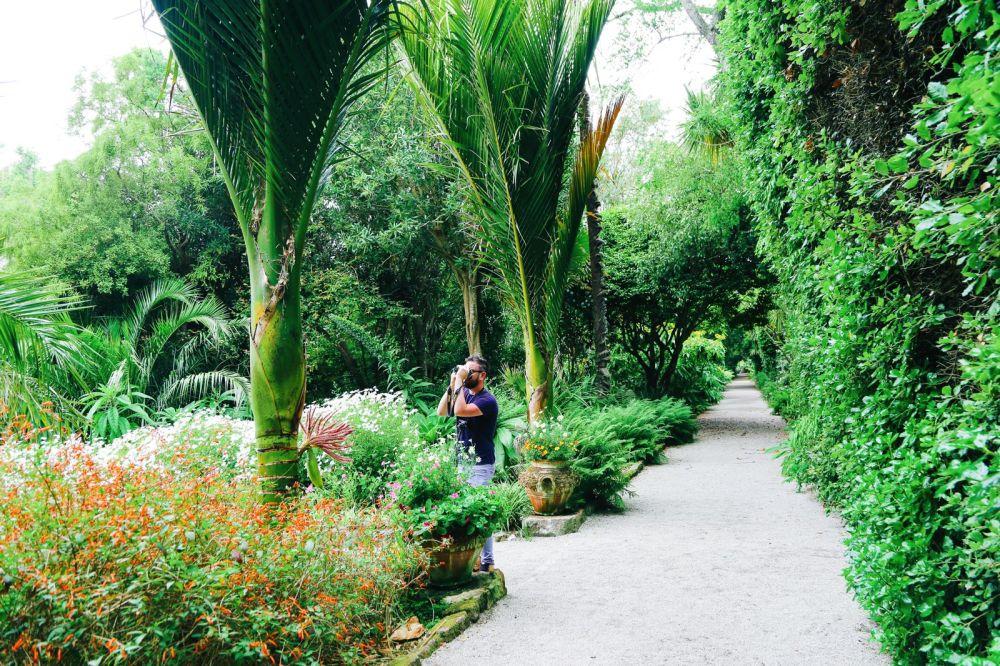A Day On Tresco Island! Tresco Abbey Gardens (45)