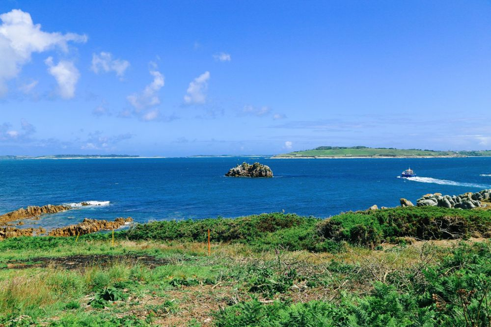 Birds Of A Feather And The Clear Blues Of St Agnes Island, Isles of Scilly (22)
