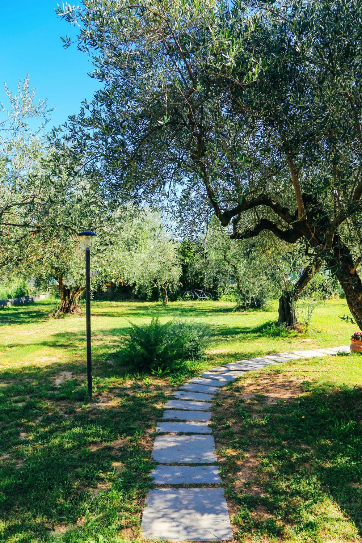 Cinque Terre To Pisa: Italy Road Trip On A Rickshaw (12)