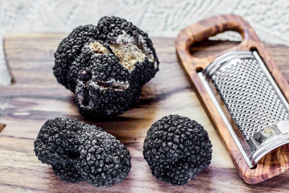 Everyday I'm Truffling: Where To Go Truffle Hunting In Britain (4)