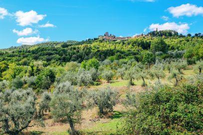Have You Ever Heard Of Civitella in Val di Chiana? (28)