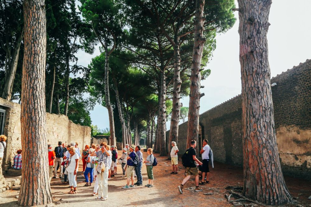 The Ancient City Of PompeiI (27)