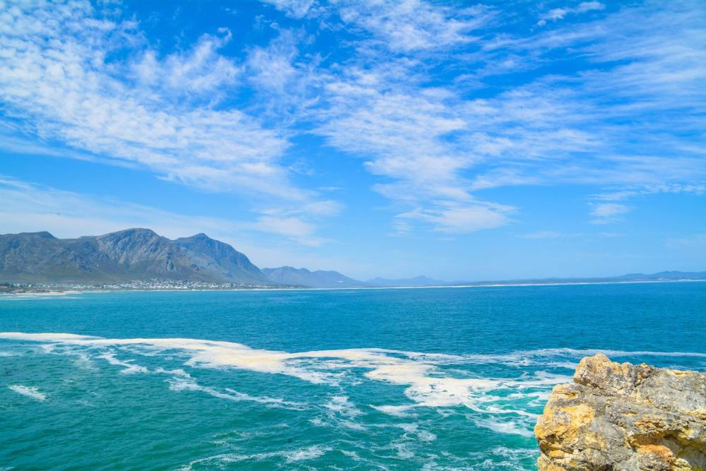 6 Breathtaking Experiences You Must Have Just Outside Of Cape Town, South Africa (25)