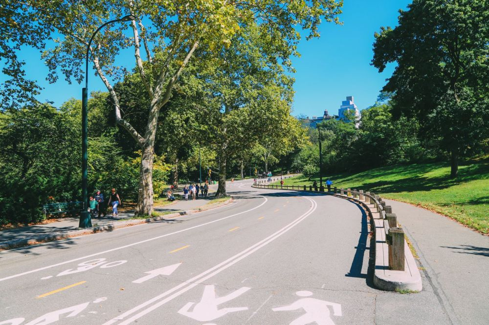 Central Park - A New York Photo Diary (24)