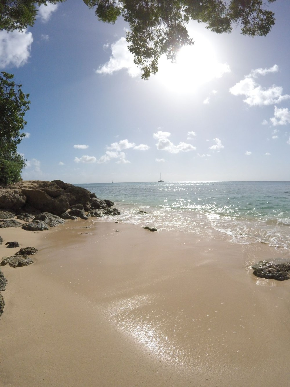 Sailing In Barbados - Swimming With Turtles and Puffer Fish (39)