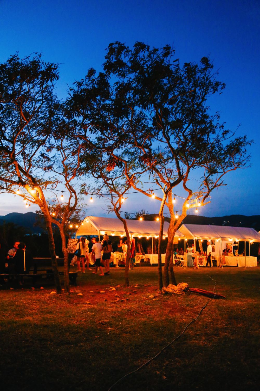 The Party (And Stunning Sunset) At Shirley Heights, Antigua (17)