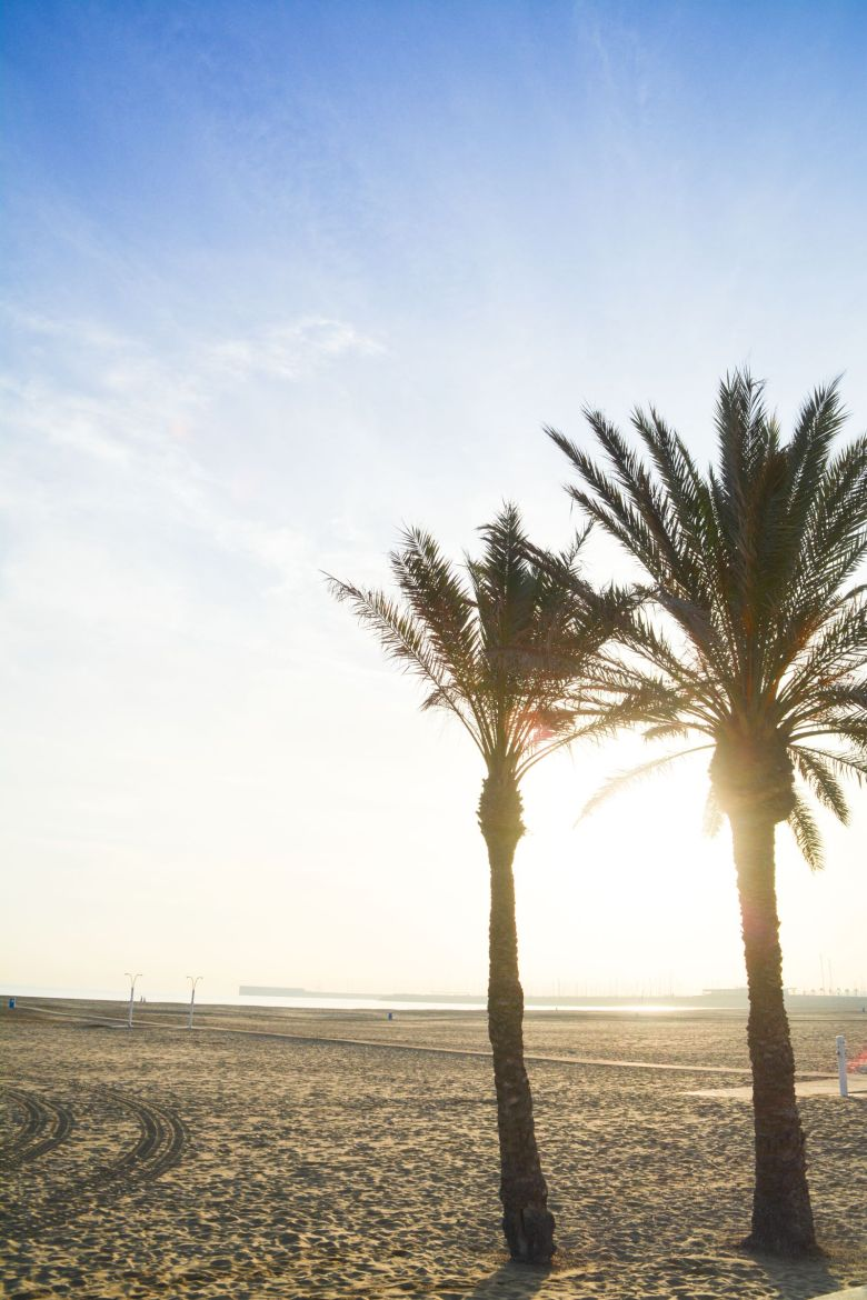 Spend A Day Exploring The Beauty Of Valencia (9)
