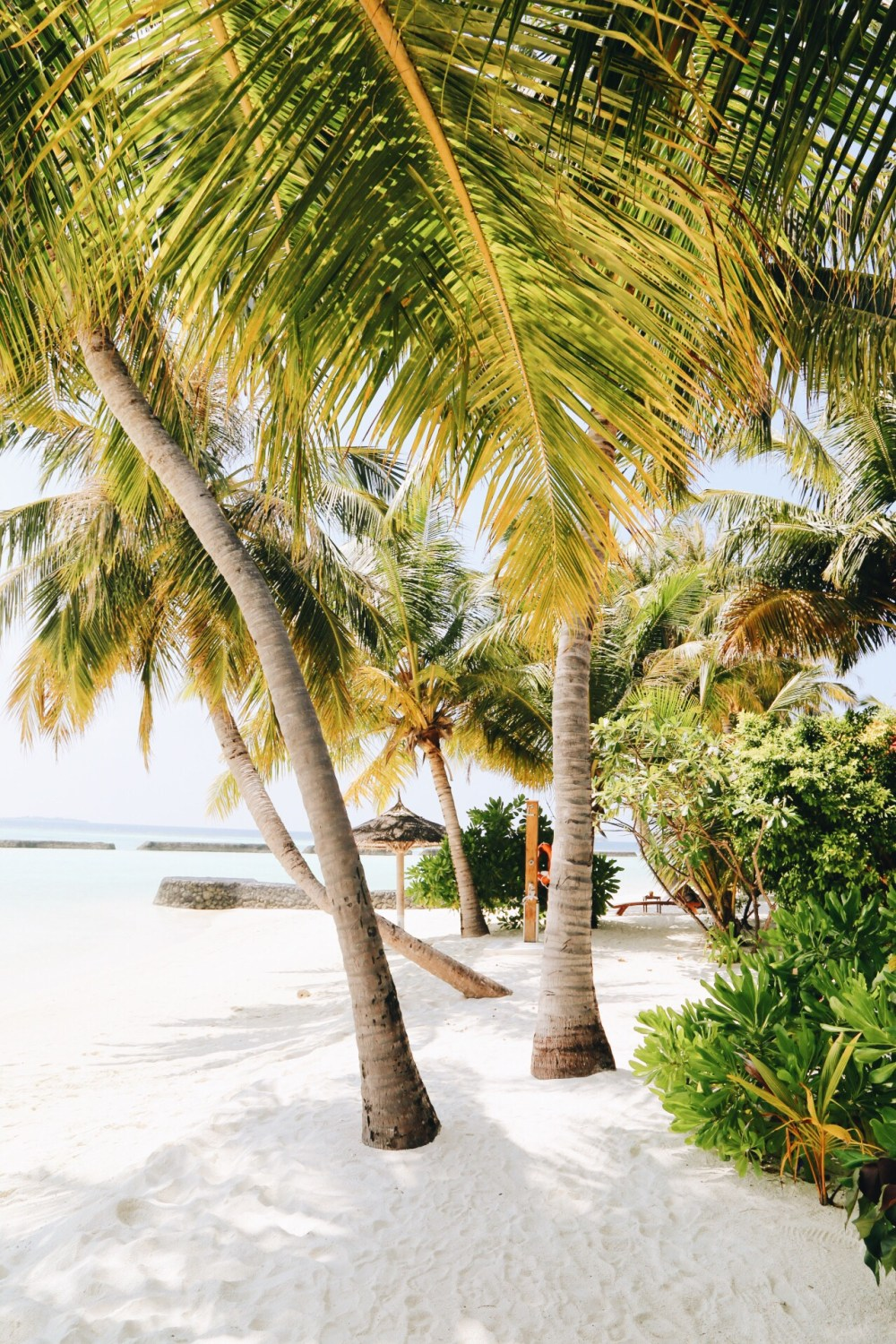 First Impressions Of The Maldives (6)