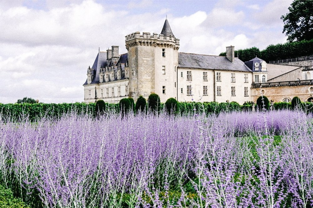 10 Fairytale Castles You Must Explore In France (6)