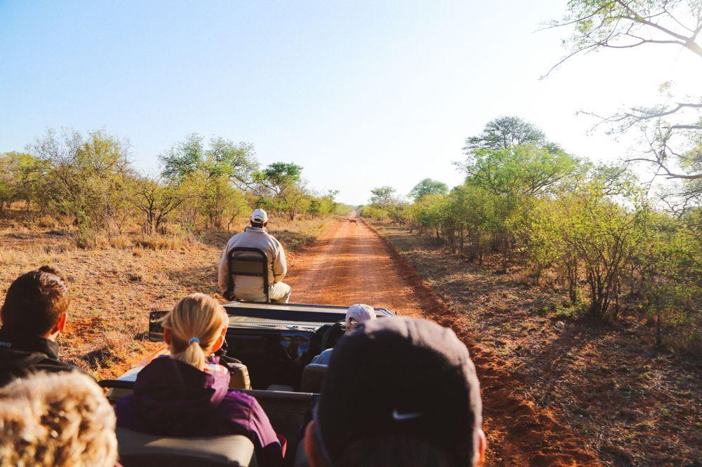 Sunrise Till Sunset - A 24 Hour South African Safari Diary (5)