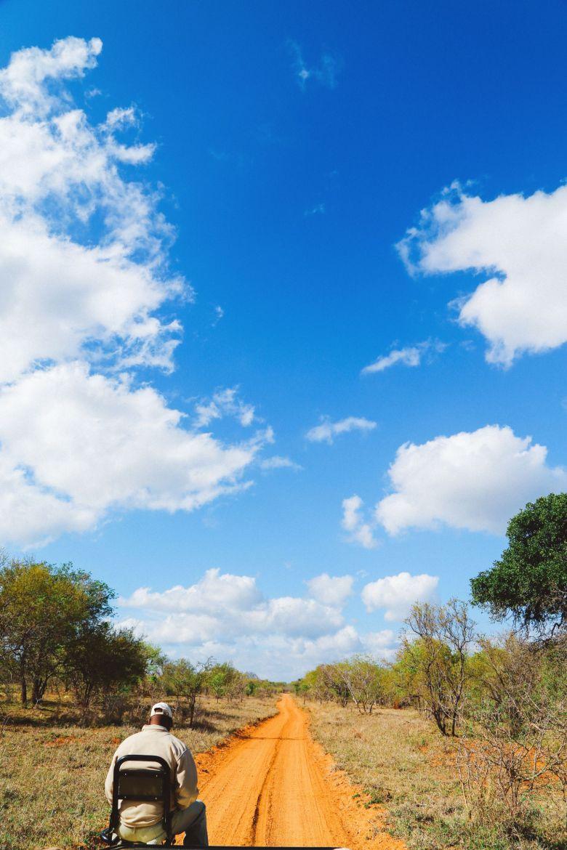 Sunrise Till Sunset - A 24 Hour South African Safari Diary (17)