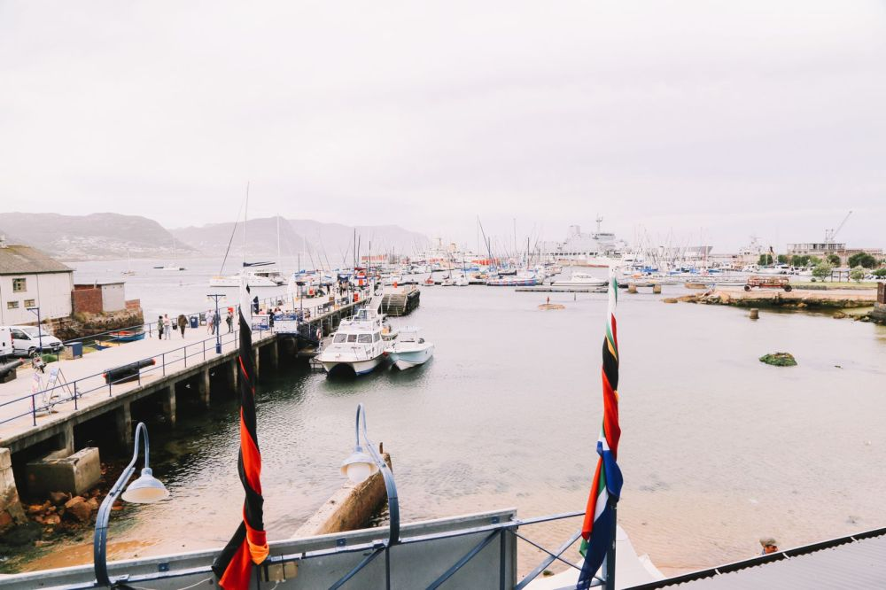 An Afternoon In Simons Town, Cape Town (3)