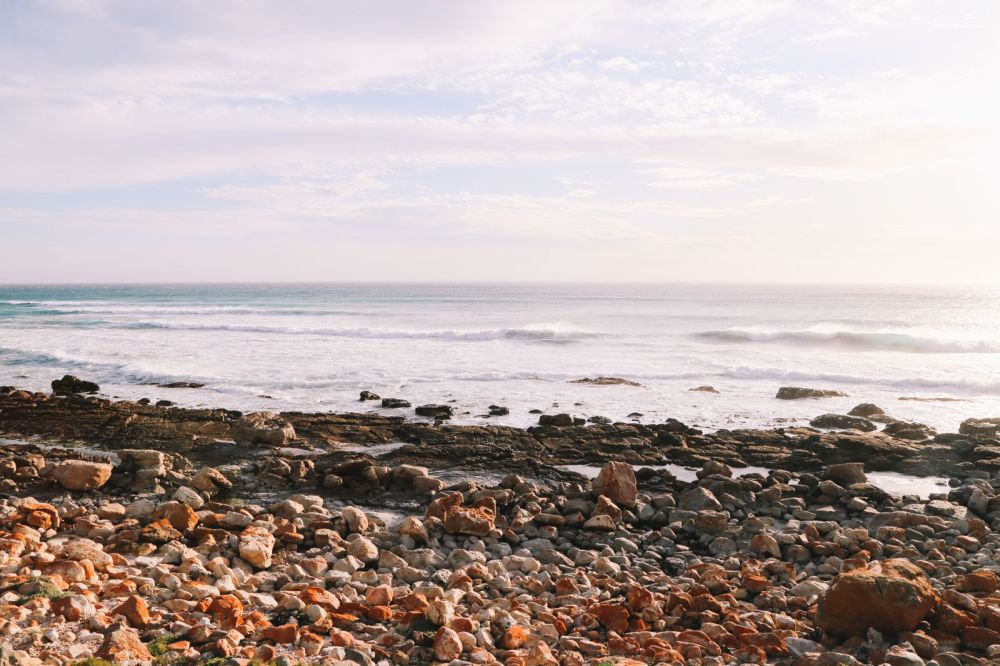 Exploring The Most Scenic Driving Route In Cape Town - The Cape Peninsula (2)
