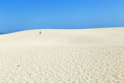 Sand-Dunes, Windmills And Cute Little Piglets In Fuerteventura, Canary Island, Spain (3)