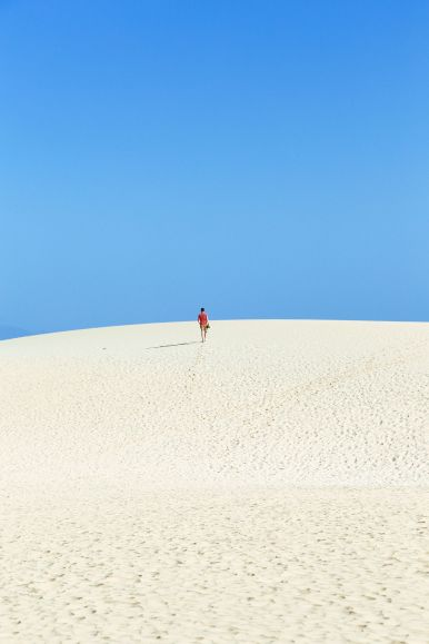 Sand-Dunes, Windmills And Cute Little Piglets In Fuerteventura, Canary Island, Spain (4)