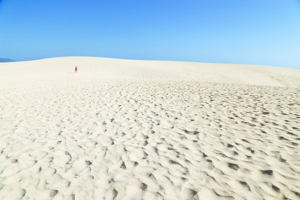 Sand-Dunes, Windmills And Cute Little Piglets In Fuerteventura, Canary Island, Spain (5)
