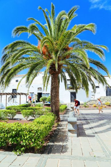Here's Why You Should Visit The Tiny Town Of Betancuria In, Fuerteventura In The Canary Islands (4)