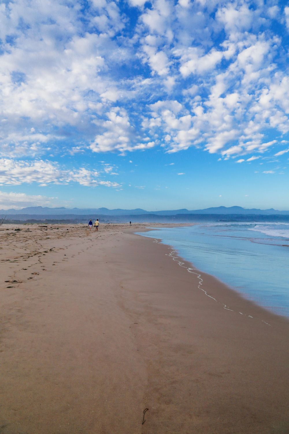 Ravines, Vineyards, Elephant Walking And The Most Spectacular Beach In South Africa's Eastern Cape (43)