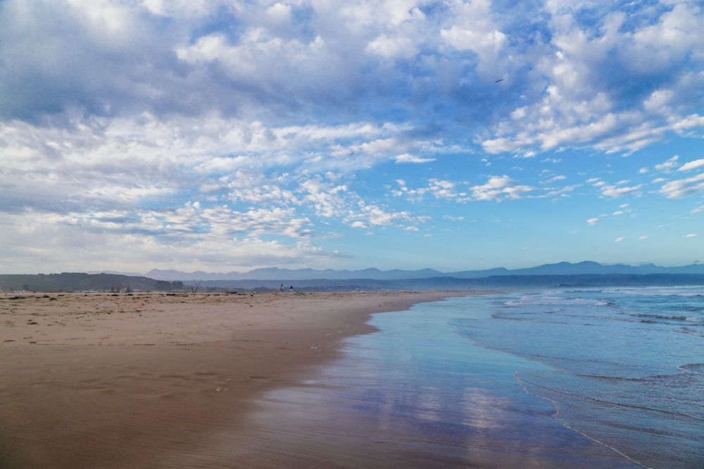 Ravines, Vineyards, Elephant Walking And The Most Spectacular Beach In South Africa's Eastern Cape (51)