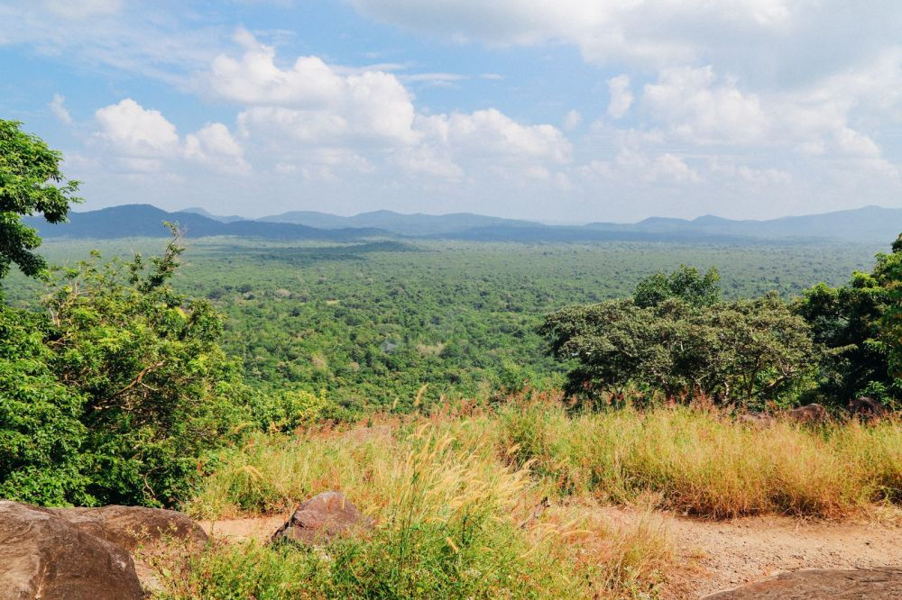 This Is One Of The Best Views In Sri Lanka - Pidurangala Rock (23)