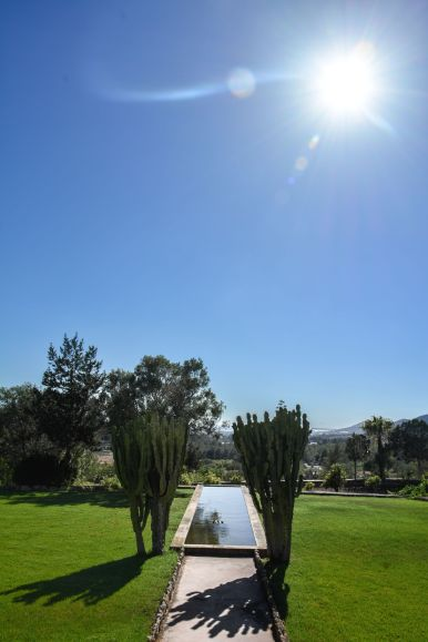 This Is Your Oasis Of Calm In Ibiza - Soulshine Yoga Retreat (71)