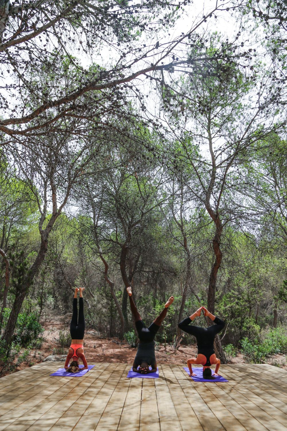 This Is Your Oasis Of Calm In Ibiza - Soulshine Yoga Retreat (72)