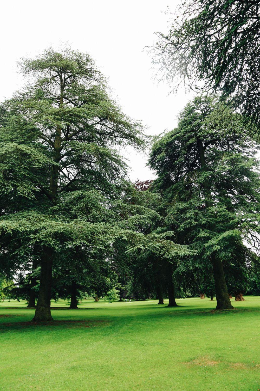 Visiting Blenheim Palace... (And The Marlborough Maze!) (56)
