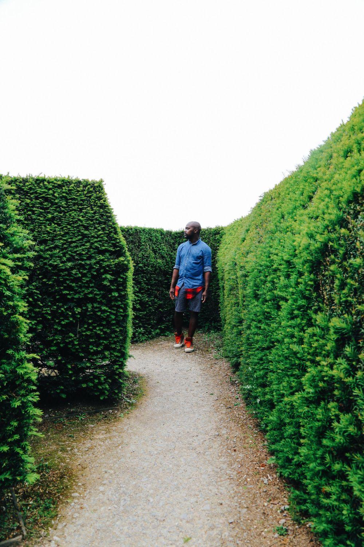 Visiting Blenheim Palace... (And The Marlborough Maze!) (66)