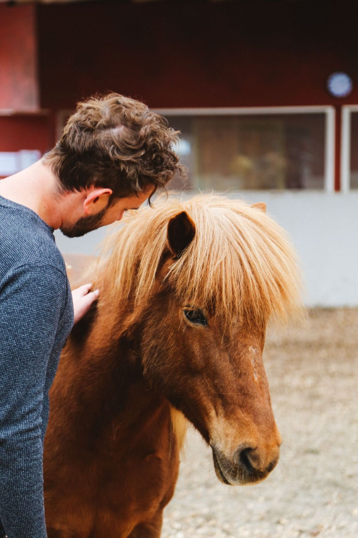 Horse Riding In The Faroe Islands... (48)