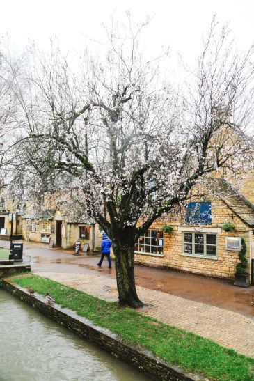 Rainy Days In The English Countryside... The Wood Norton, Bourton-On-The-Water, Broadway, Cotswolds, Stow-on-the-wold (18)