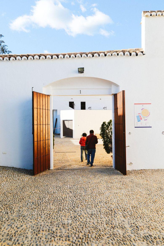 Toros And Ancient City Walks... In Ronda, Spain (5)