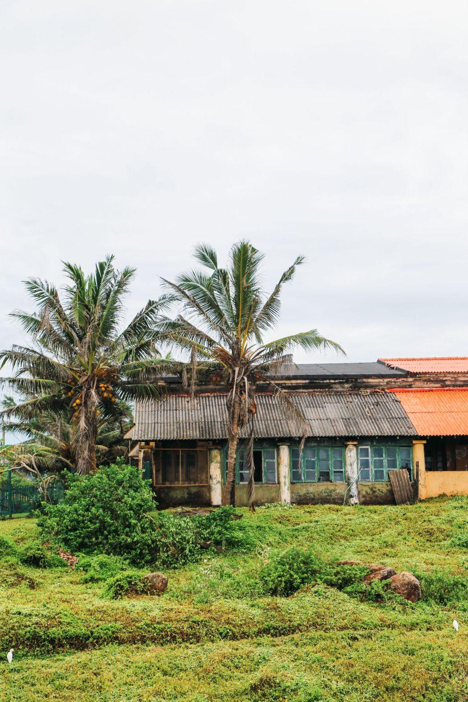 A Taste Of Sri Lanka... (18)