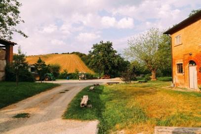 The Farmhouse... In Tuscany, Italy (49)