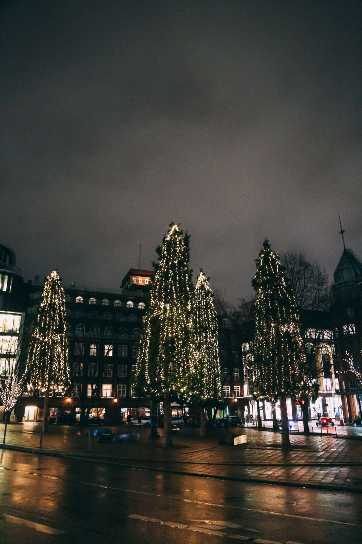 Christmas Market Fun In Hamburg, Germany… (59)