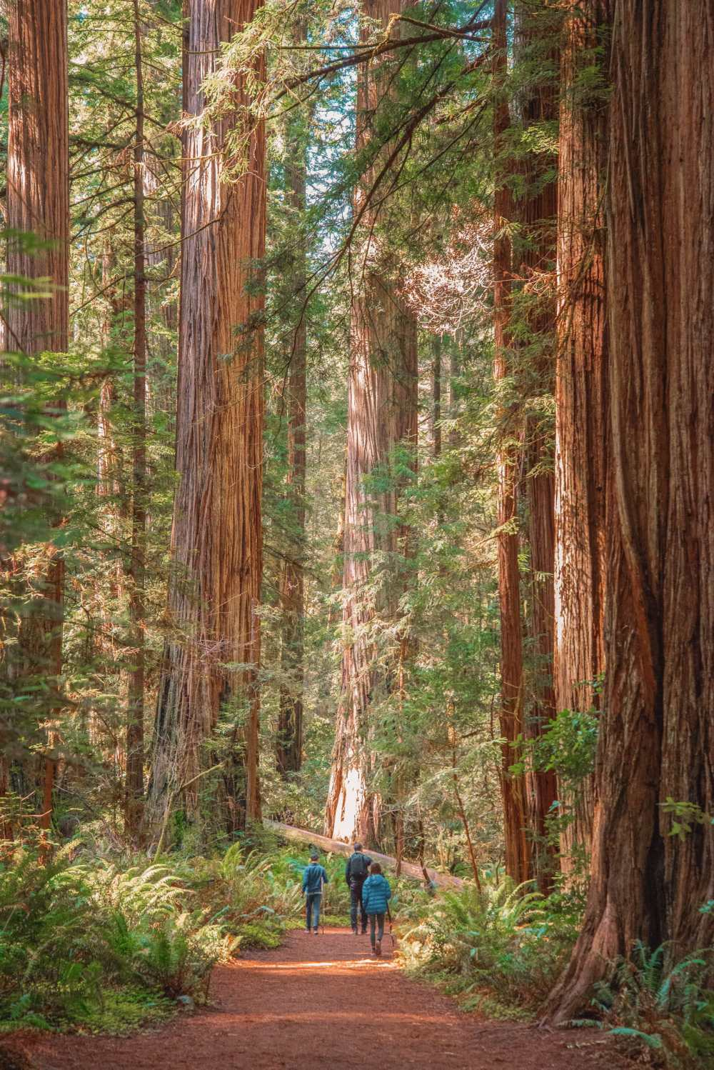 Best Hikes In California (3)