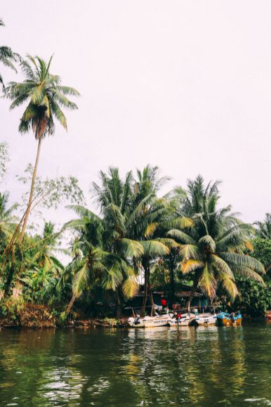 A Journey Down The Madu Ganga River, Sri Lanka (4)