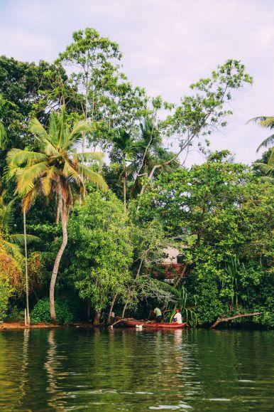 A Journey Down The Madu Ganga River, Sri Lanka (8)