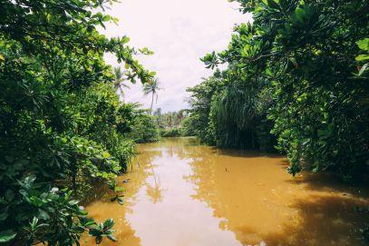 Exploring Beruwala And Bentota, Sri Lanka (3)