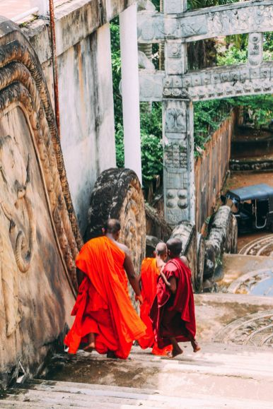Exploring Beruwala And Bentota, Sri Lanka (14)