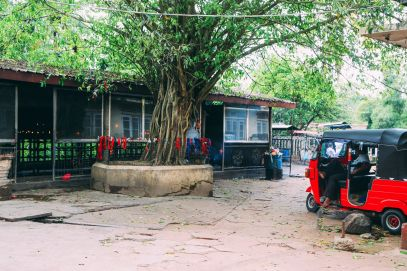 Exploring Beruwala And Bentota, Sri Lanka (21)