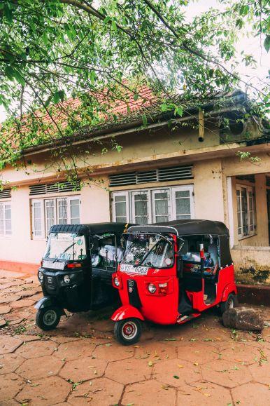Exploring Beruwala And Bentota, Sri Lanka (23)