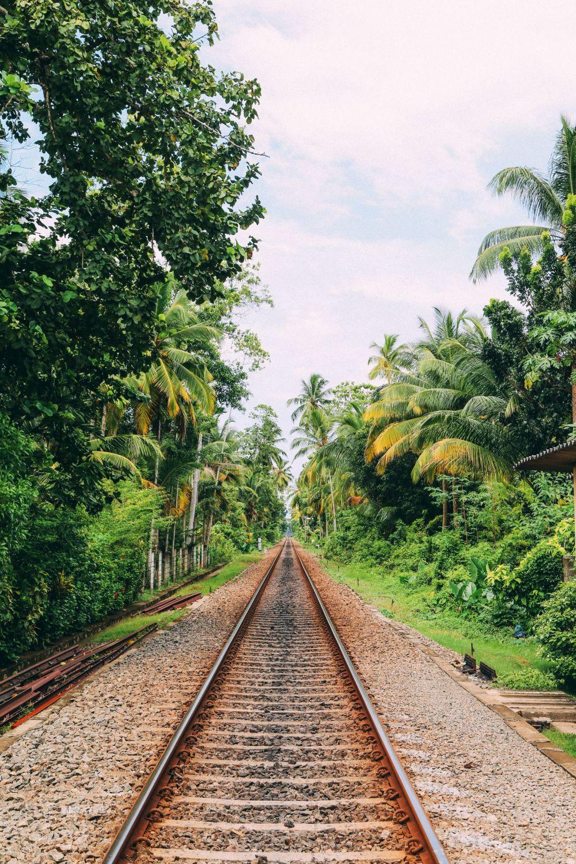 Exploring Beruwala And Bentota, Sri Lanka (25)
