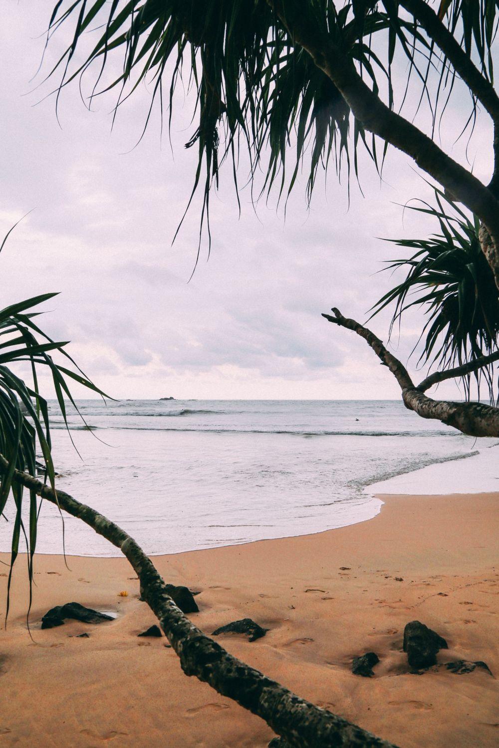 Exploring Beruwala And Bentota, Sri Lanka (54)