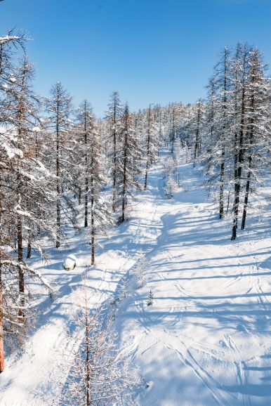 Skiing In The French Alps... (1)