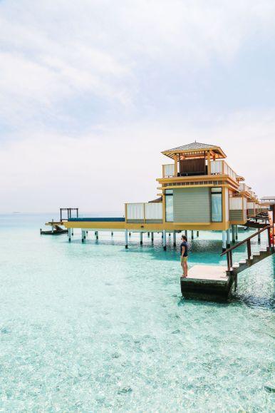Reef Explorers... At the Angsana Velavaru Maldives (14)