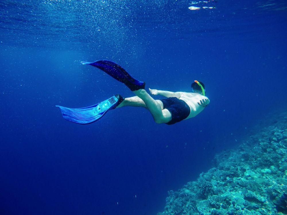 Reef Explorers... At the Angsana Velavaru Maldives (23)