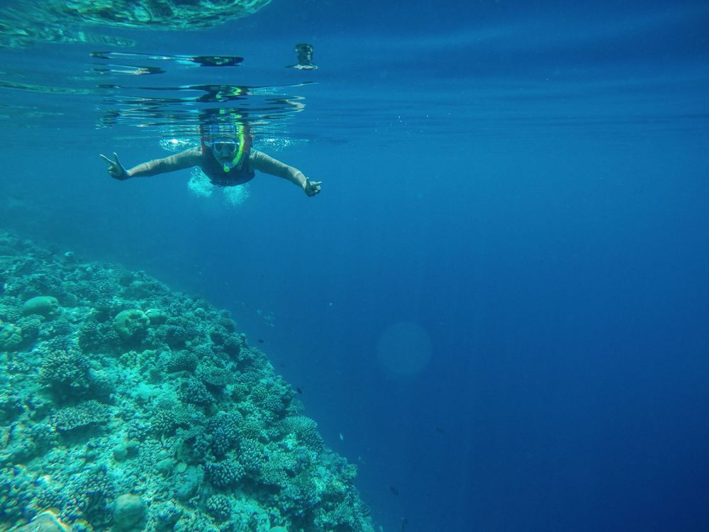 Reef Explorers... At the Angsana Velavaru Maldives (27)