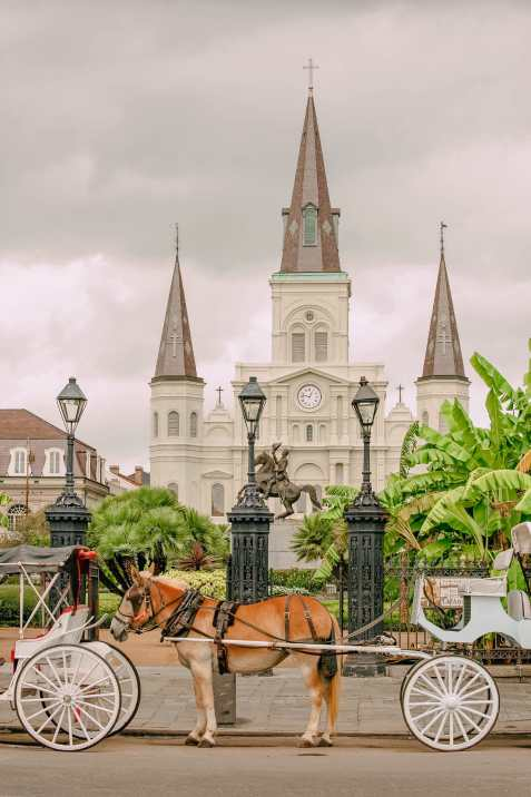 best things to do in New Orleans (5)