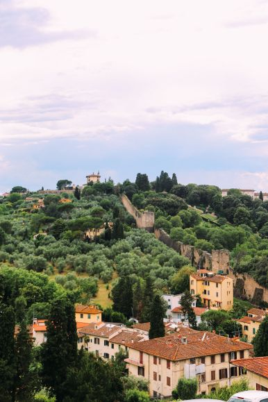 The Return To Florence, Italy... (8)